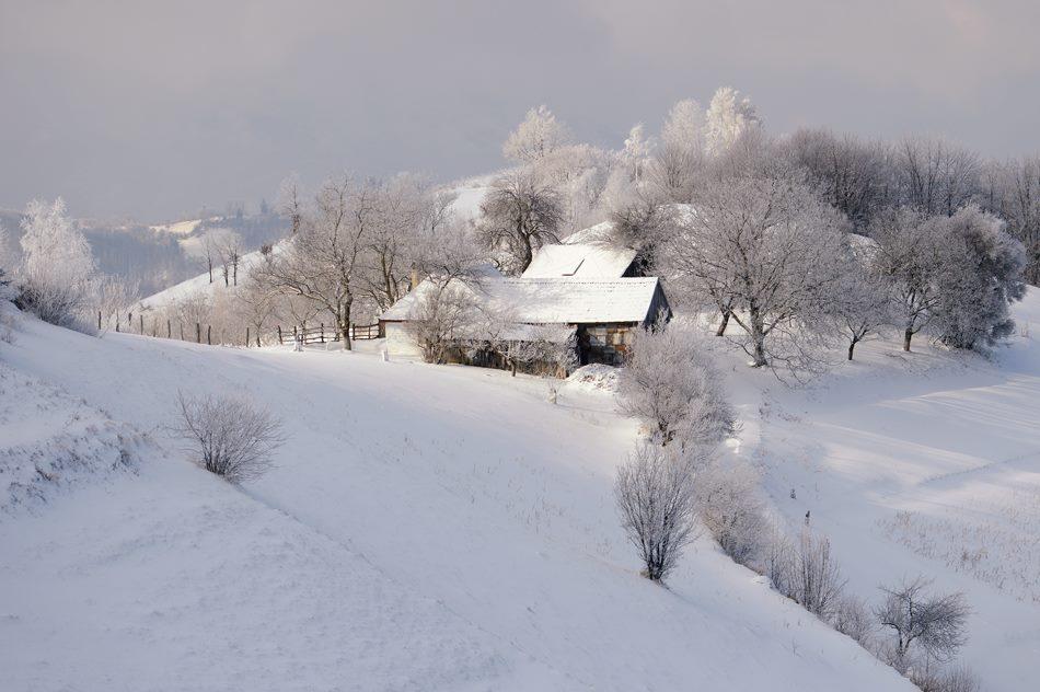 holbav-iarna-2016-7